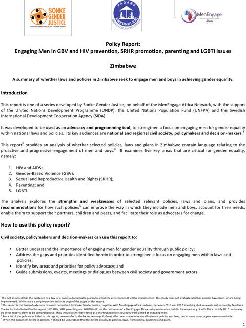 Policy-Report-Draft Zimbabwe- FINAL-1