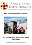 Red Card Campaign Progress Project Report 2010