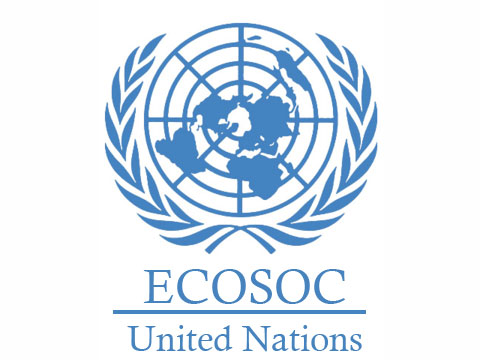 UN grants Sonke ECOSOC special consultative status