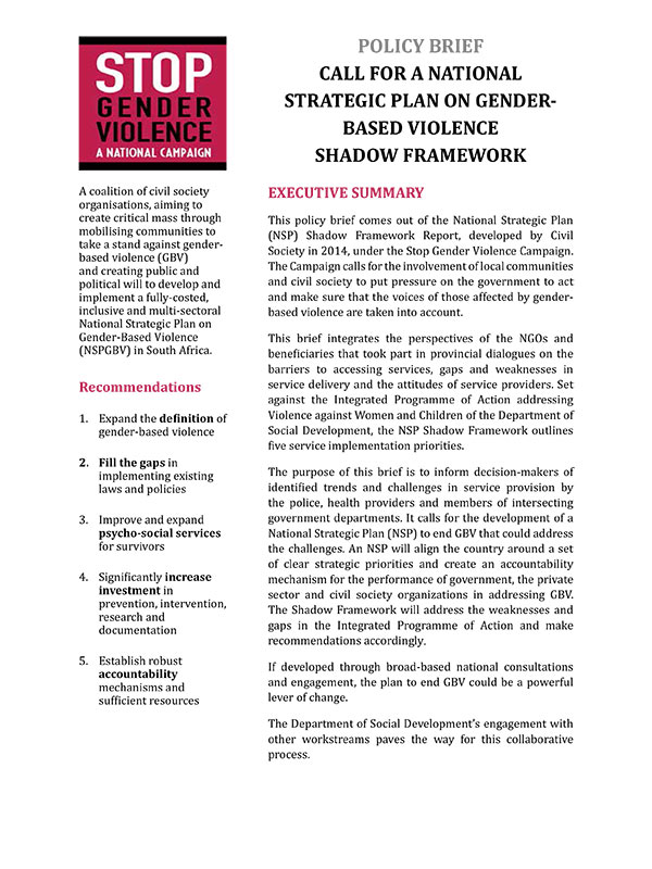 Call For NSP GBV Shadow Framework