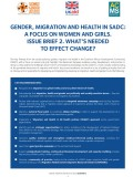 Gender Migration Health SADC 2