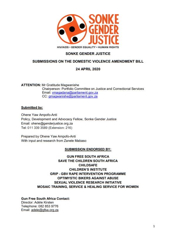 Submission Domestic Violence Amendment Bill